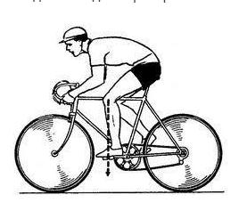 Положение колена